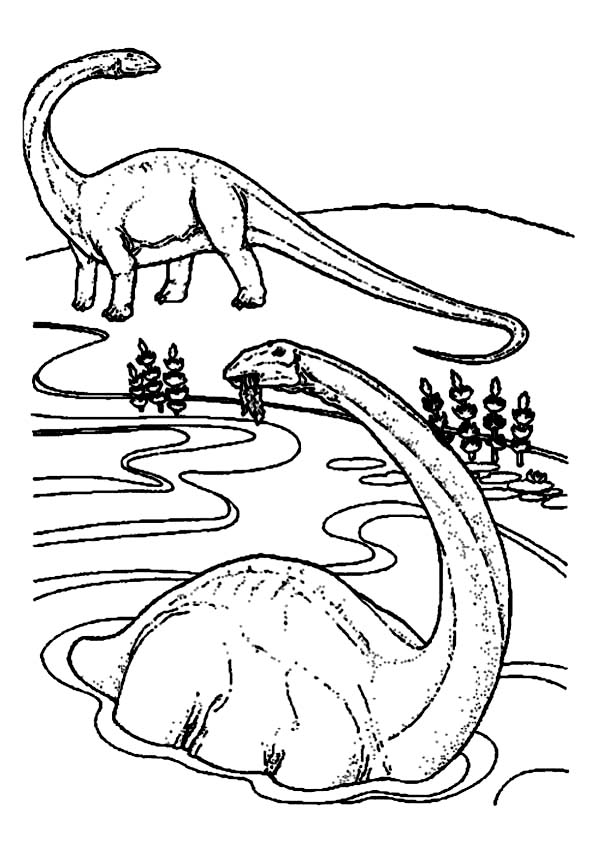 Brachiosaurus Is Swimming Coloring Page Color Luna Swimming Coloring Pages