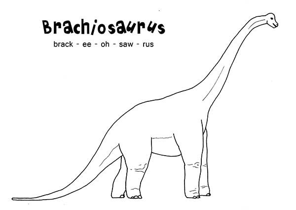 Brachiosaurus, : How to Spell Brachiosaurus Coloring Page