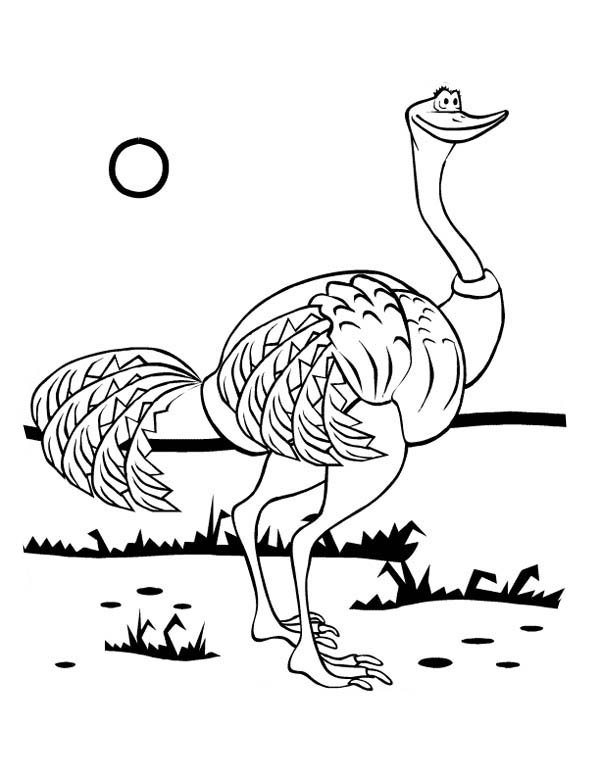 Ostrich, : Hungry Ostrich Looking for Food Coloring Page