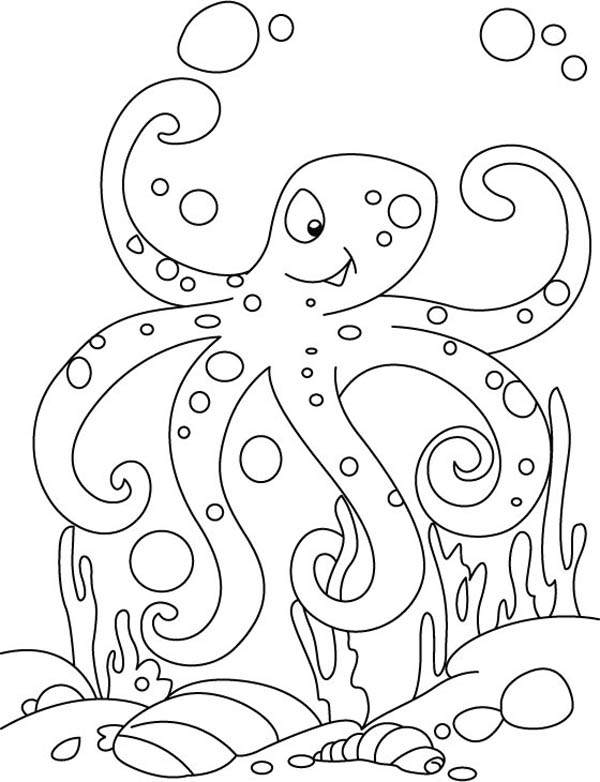 Octopus, : Octopus Winking Coloring Page