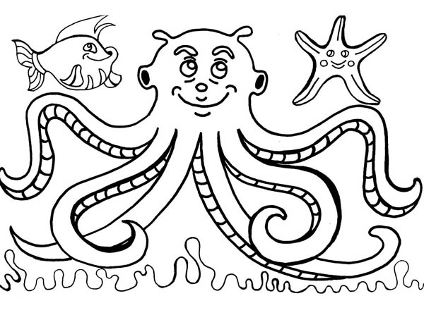 Octopus, : Octopus and Friends Coloring Page
