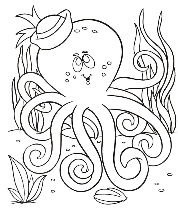 Octopus, : Octopus with Sailor Hat Coloring Page