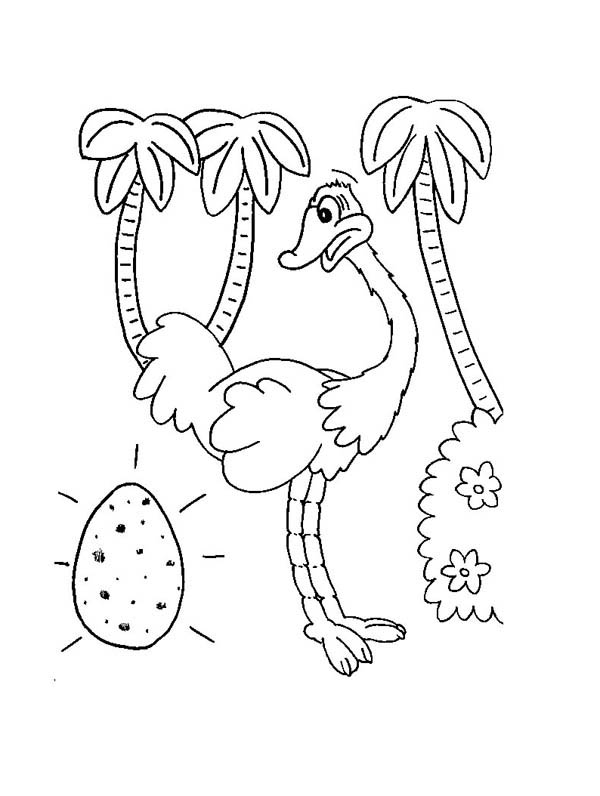 ostrich egg coloring page - Egg Coloring Page