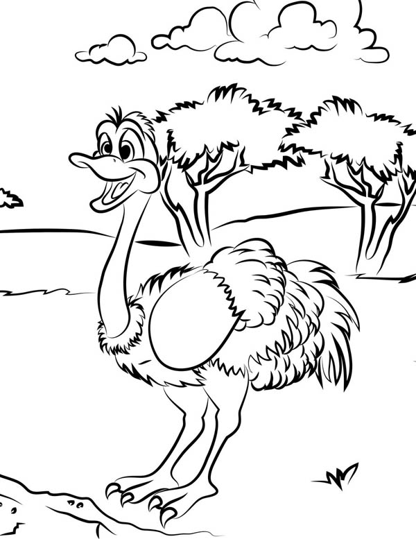 Ostrich, : Ostrich on the Meadow Coloring Page