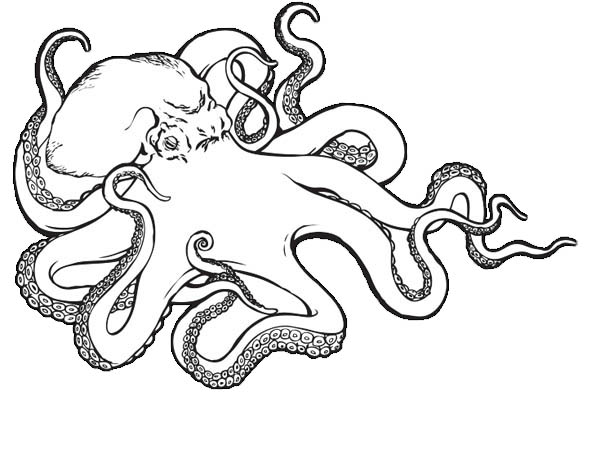 Sea Monster Octopus Coloring Page