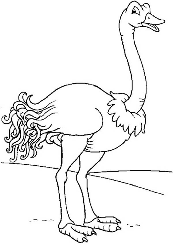 Smiling Ostrich Coloring Page