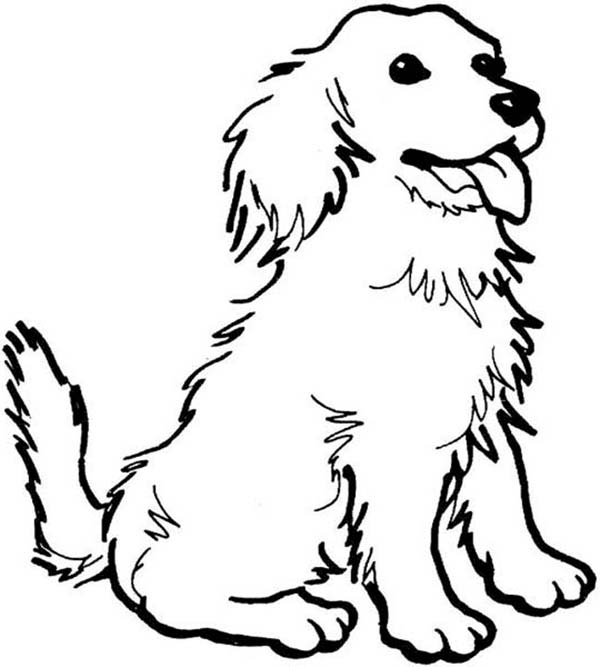 Dogs, : A Happy Dog Coloring Page