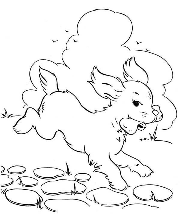 Dogs, : Dog Eats Delicous Bone Coloring Page