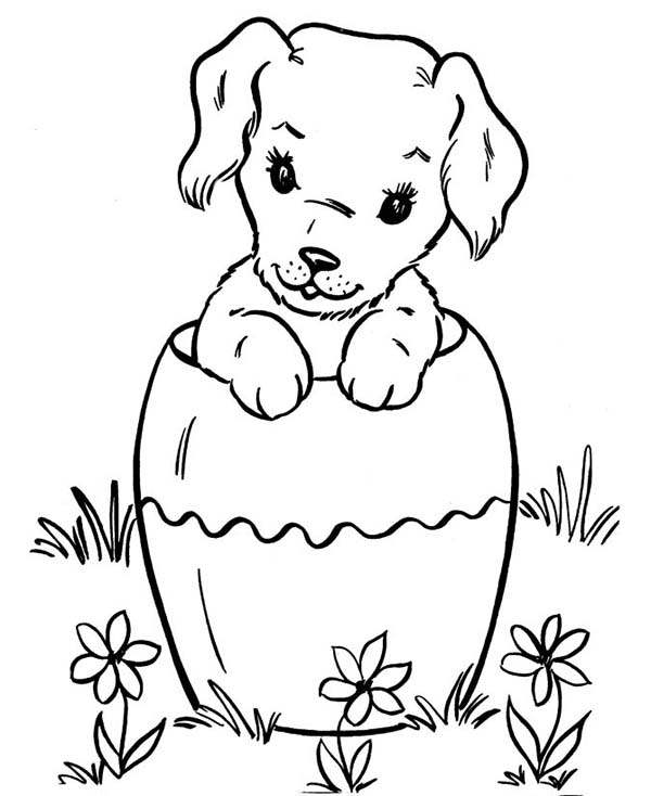 Dogs, : Dog Hiding in Big Vase Coloring Page