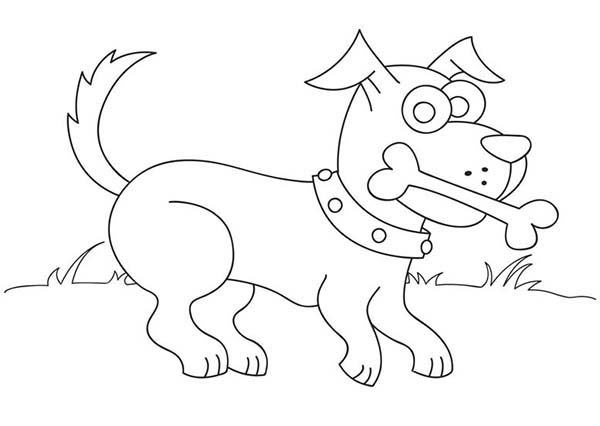 Dogs, : Dog Love Eating Bone Coloring Page