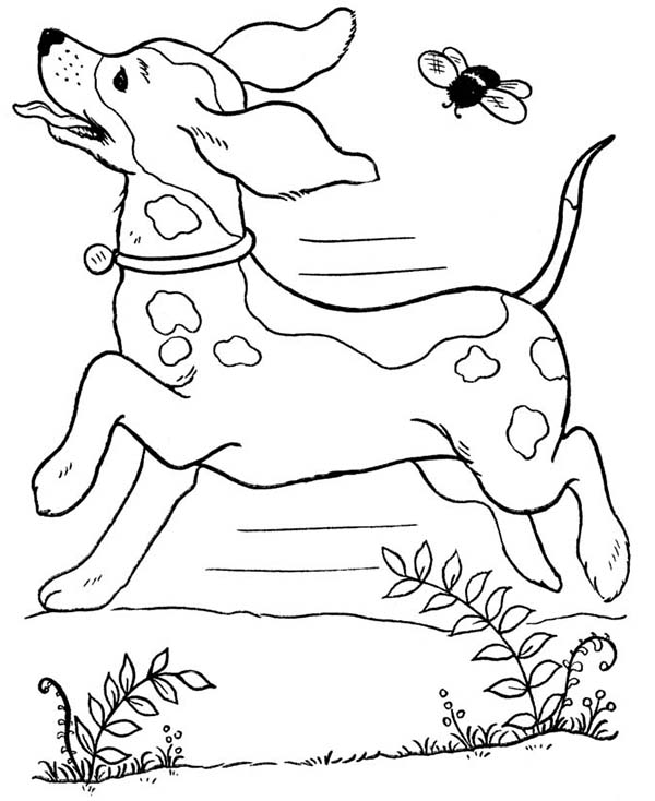Dog Running Wild with a Bee Coloring Page: Dog Running ...