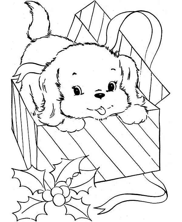 Dogs, : Little Dog Came from Present Box Coloring Page