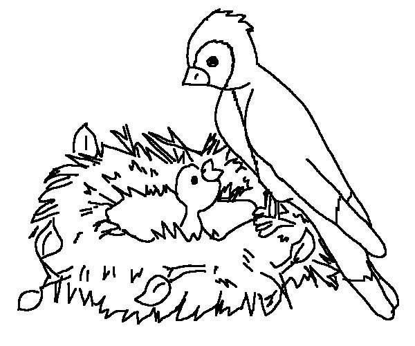 Birds, : Mother of Bird Feeding Her Baby Coloring Page