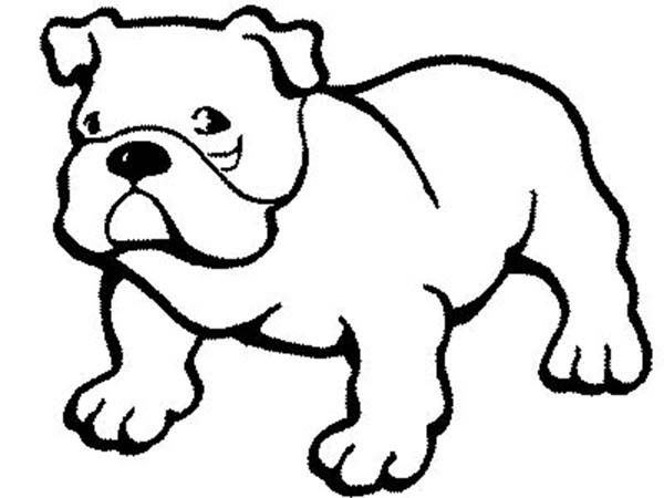 Dogs, : Pitbull Dog Coloring Page