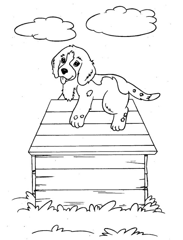 Dogs, : Puppy Dog Climb Up a Dog House Coloring Page