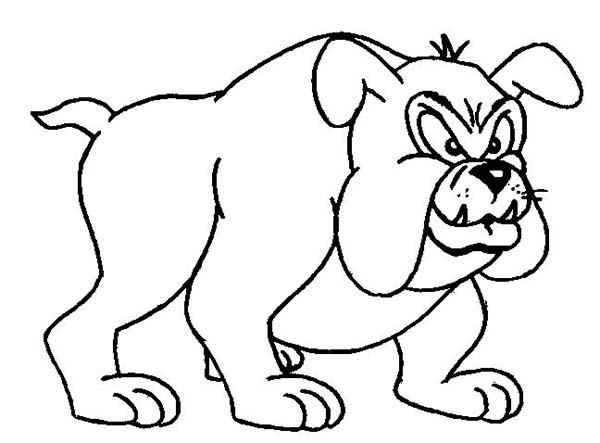 Dogs, : Terrifying Bull Dog Coloring Page
