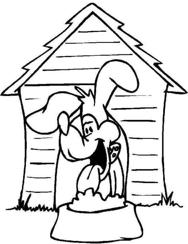 Dogs, : The Dog is Eating His Lunch Coloring Page