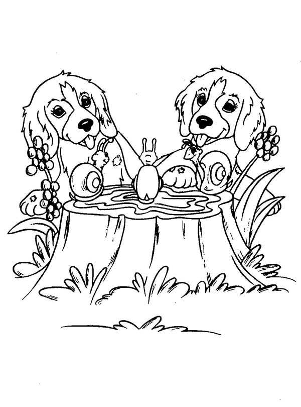 Dogs, : Twin Dog Playing with Snails Coloring Page