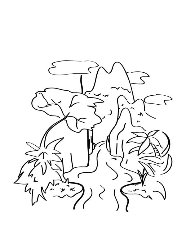 Nature, : Amazing Rainforest of Nature Coloring Page