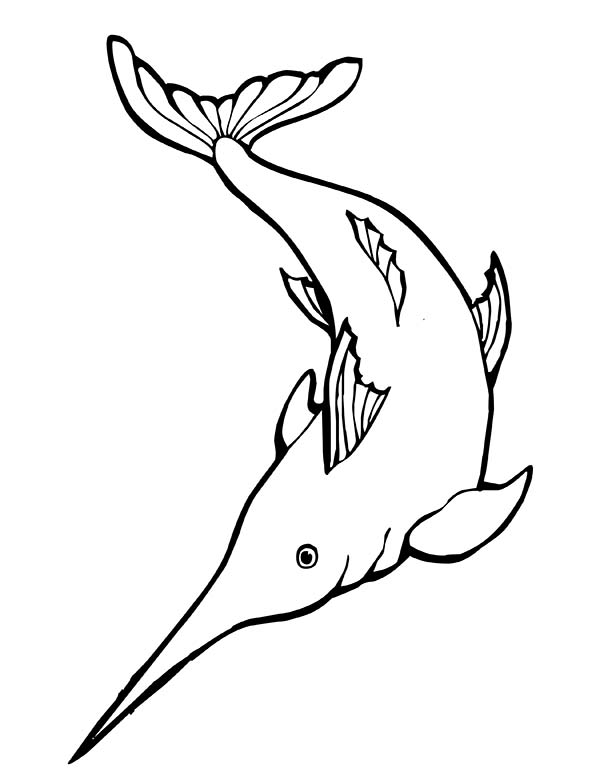 Swordfish, : Awesome Swordfish Coloring Page
