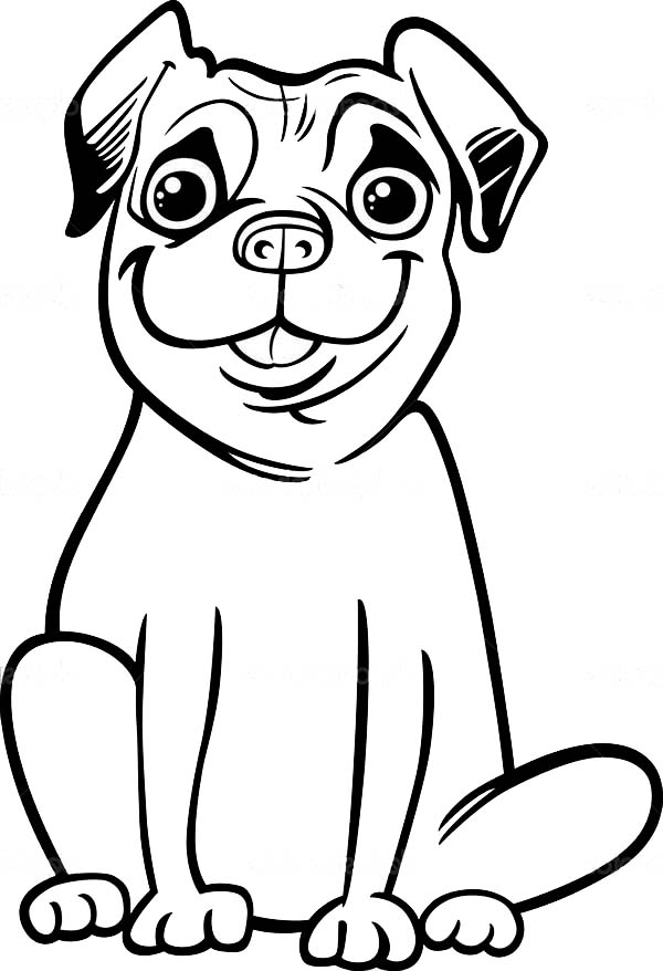 Pug, : Big Smile of Pug Coloring Page