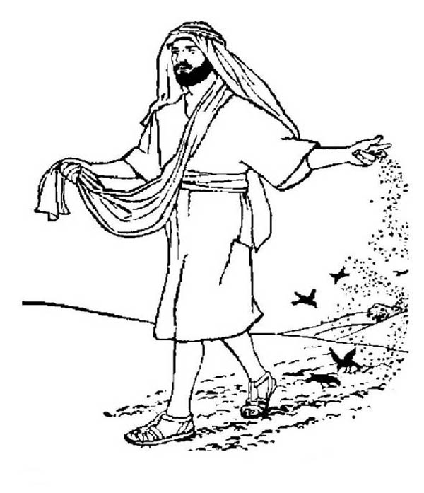 Parable of the Sower, : Falling Seed Eaten by Birds in Parable of the Sower Coloring Page