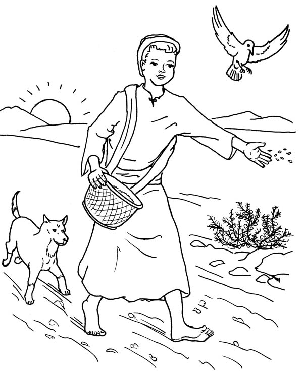 Farmer Scattered Seed Among Thorns In Parable Of The Sower Coloring Page