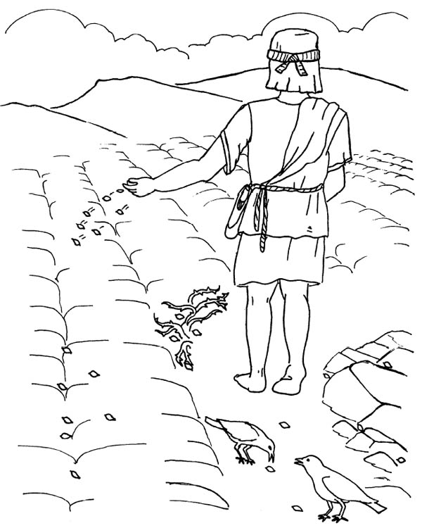 Parable of the Sower, : Good Ground Where Seed was Scattered in Parable of the Sower Coloring Page