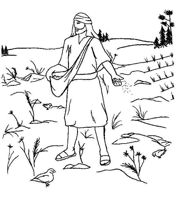 Parable of the Sower, : Land Where so Much Bush in Parable of the Sower Coloring Page