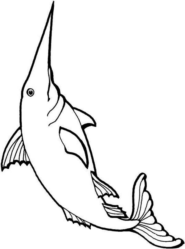 Swordfish, : Long Bill Swordfish Coloring Page