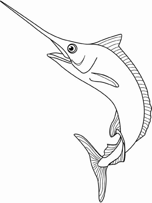 Marlin The Swordfish Coloring Page
