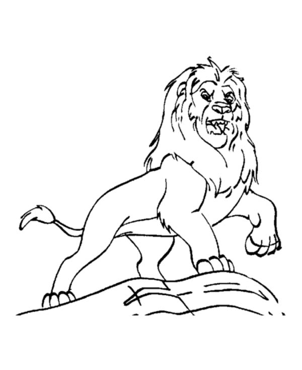 Lion, : Mufasa from the Lion King Coloring Page