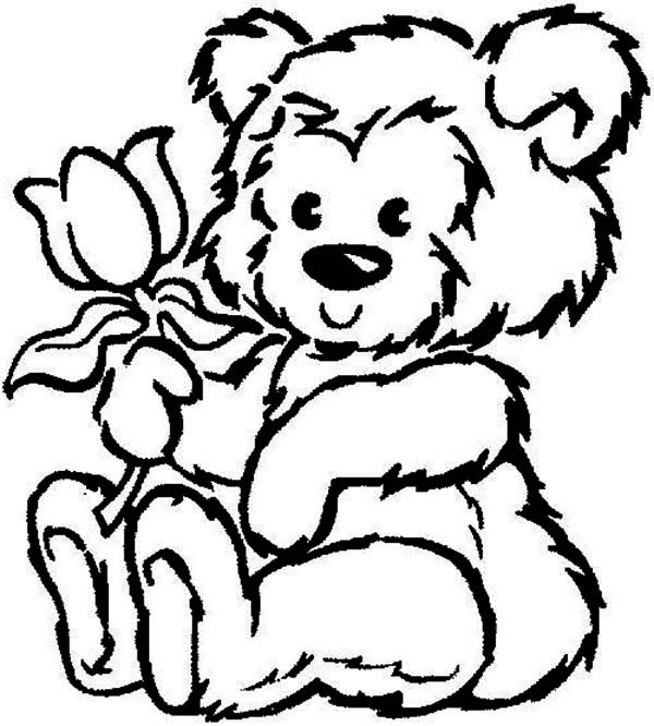 Teddy Bear, : Picture of Fluffy Teddy Bear Hold a Rose Coloring Page