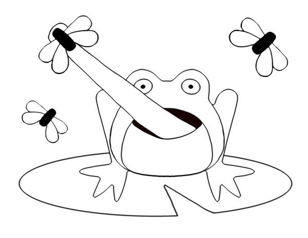 lily pad picture of frog on lily pad catching flies coloring page