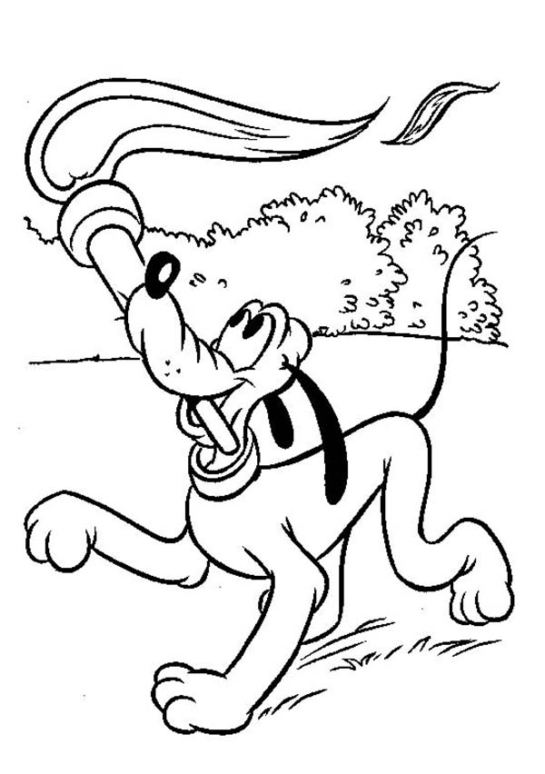 Pluto, : Pluto the Dog Play with Torch Coloring Page