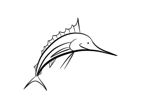 Swordfish, : Popular Fish Among Fisherman Swordfish Coloring Page