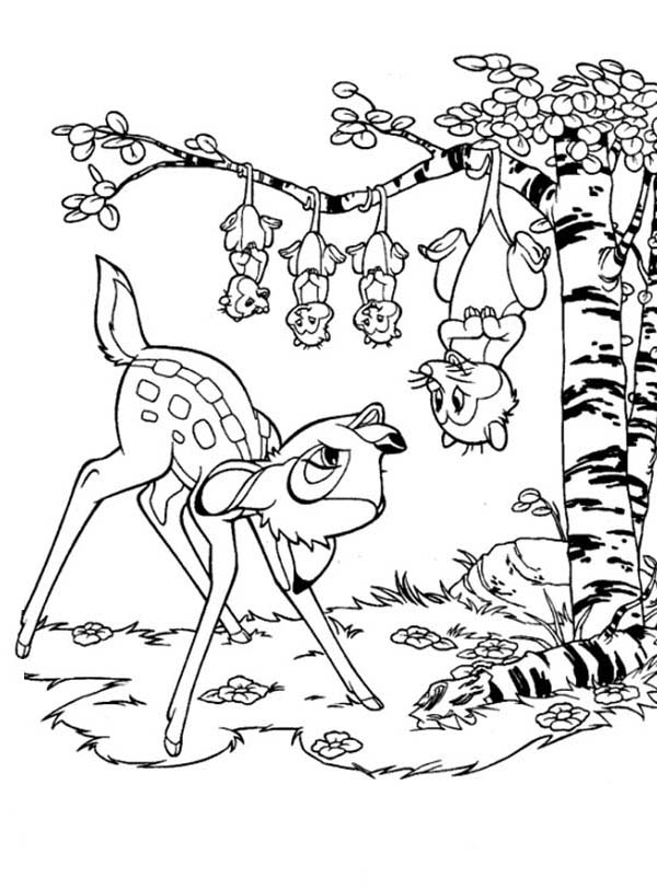 Possum, : Possum Meet Bamby Coloring Page