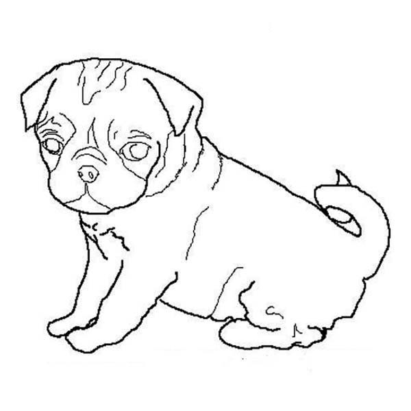 chibi pug dog coloring page chibi pug dog coloring page color luna