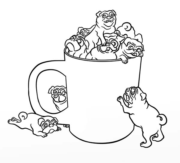 Pug in a Cup Coloring Page Color Luna