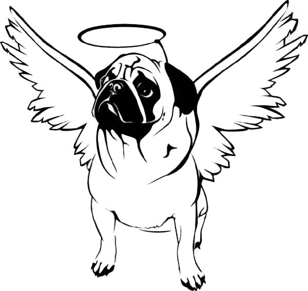Pug with Hallo on His Head Coloring Page Color Luna