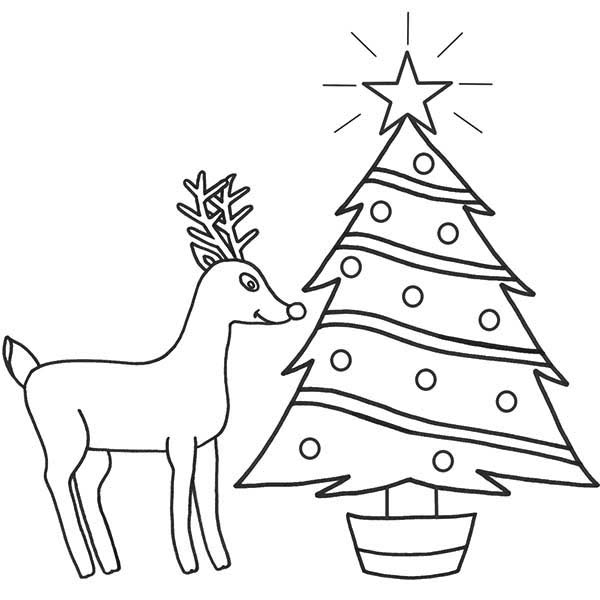 Rudolph, : Rudolph the Red Nosed Reindeer and Christmas Tree Coloring Page