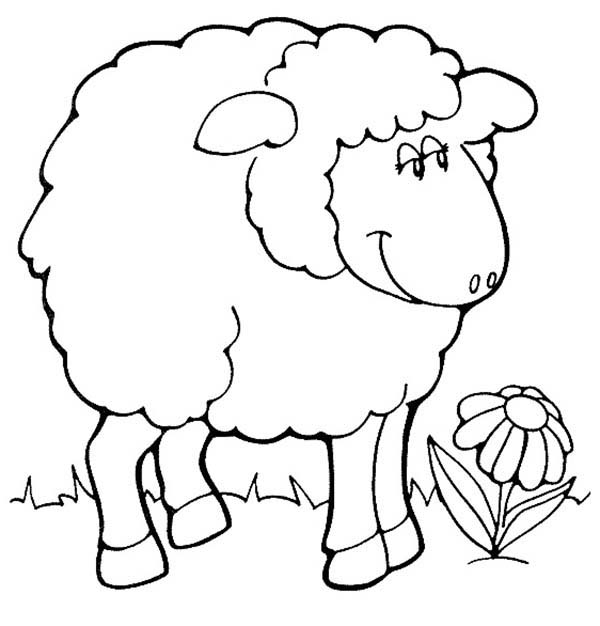 Shaun the sheep image coloring page color luna for Sheep coloring page