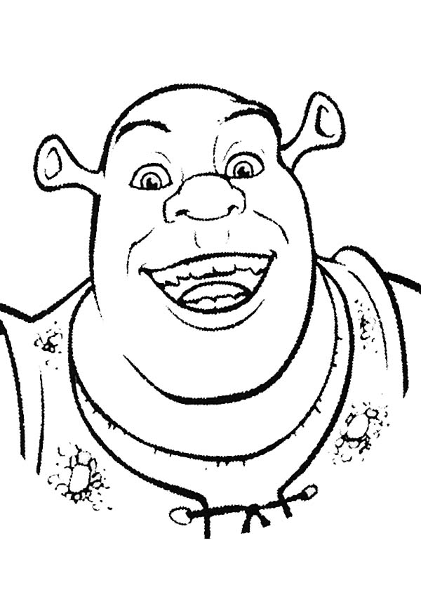 Shrek and Donkey are Amazed Coloring Page Color Luna