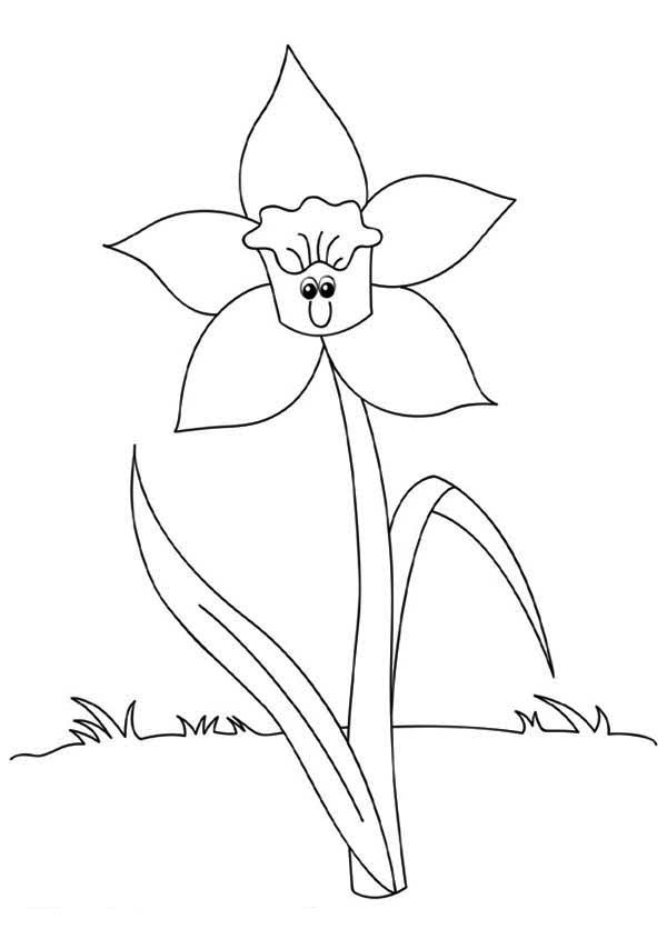Spring Flower, : Spring Flower Begin to Blossom Coloring Page