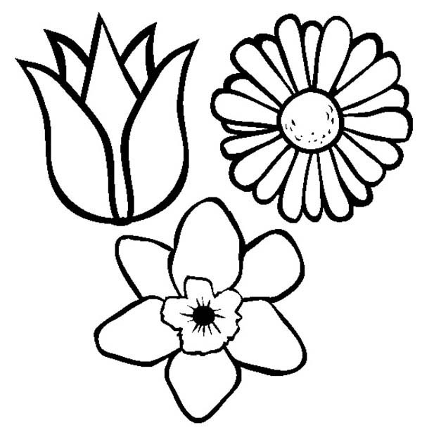 Spring Flower Coloring Page For Kids