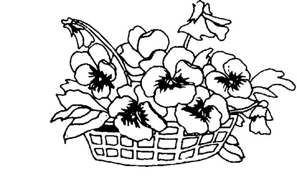 Spring Flower on a Basket Coloring Page Color Luna