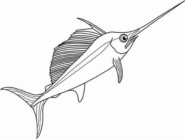 Swordfish, : Swordfish Picture Coloring Page