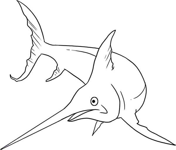 Swordfish Is A Monster Fish Coloring Page