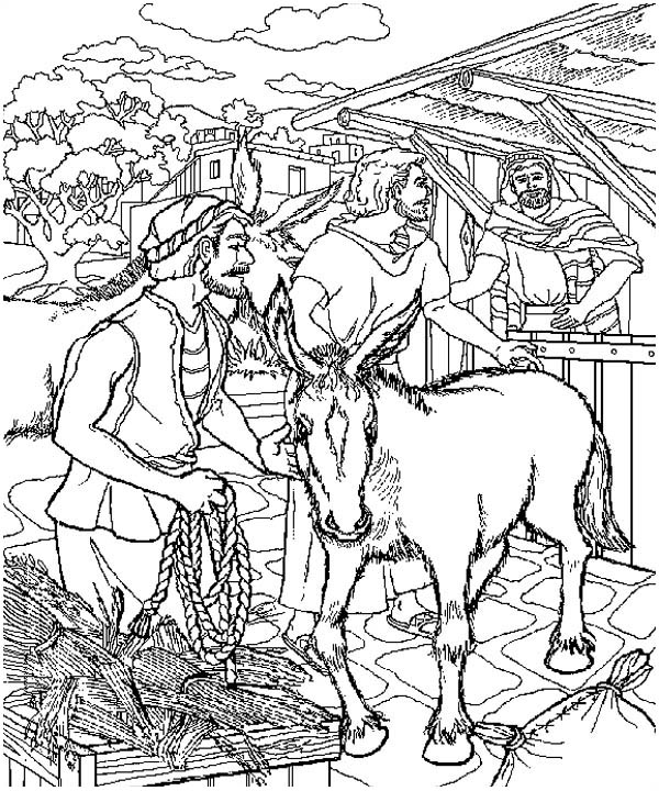 Palm Sunday, : The Donkey that Jesus Rode on Palm Sunday Coloring Page