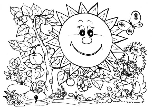 Nature, : The Sun and Plants of Nature Coloring Page